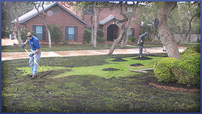 Area 63 Lawncare San Antonio TX Landscaping Garden Ridge TX